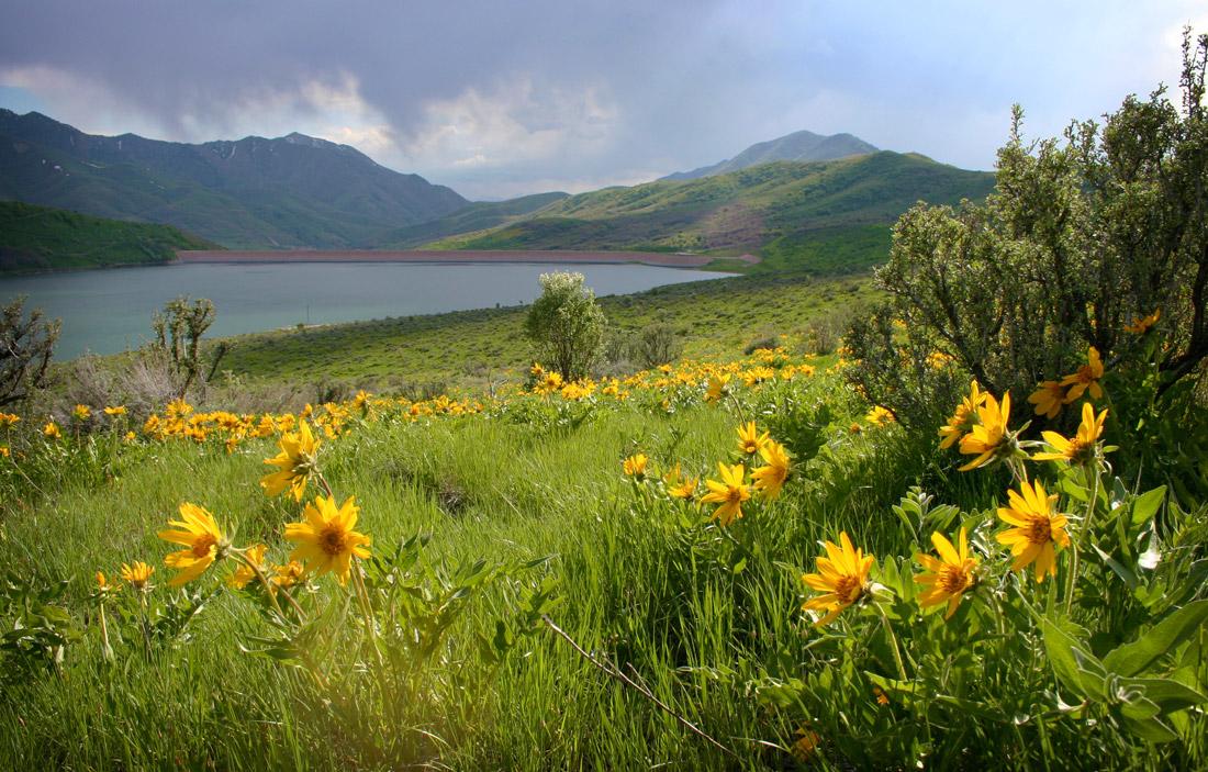 roadrunner campground at Lake Pleasant, AZ - RV Cheaper!