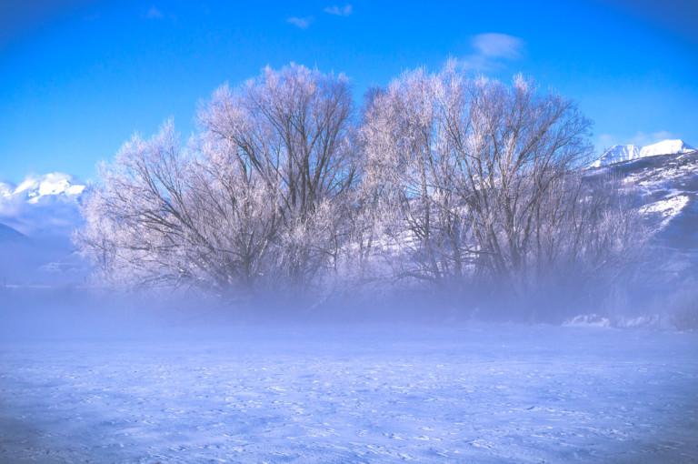 Foggy Midway Utah Winterscape